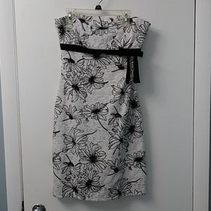 Lace Staplers Dress